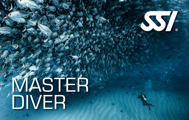 plongee ssi master diver reserve cousteau guadeloupe