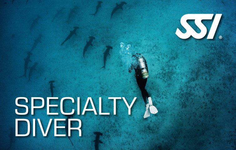 ssi reserve cousteau speciality diver plongee guadeloupe