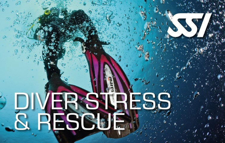 formation sauvetage premiers secours ssi stress plongee reserve cousteau guadeloupe